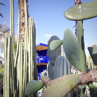Blue House at Jardin Majorelle